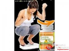 Exactly how Does Primo Garcinia Cambogia extract Cambogia Job?