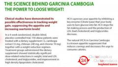 http://newhealthsupplement.com/garcinia-slim-fit-180/