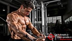 http://newmusclesupplements.com/muscle-science/
